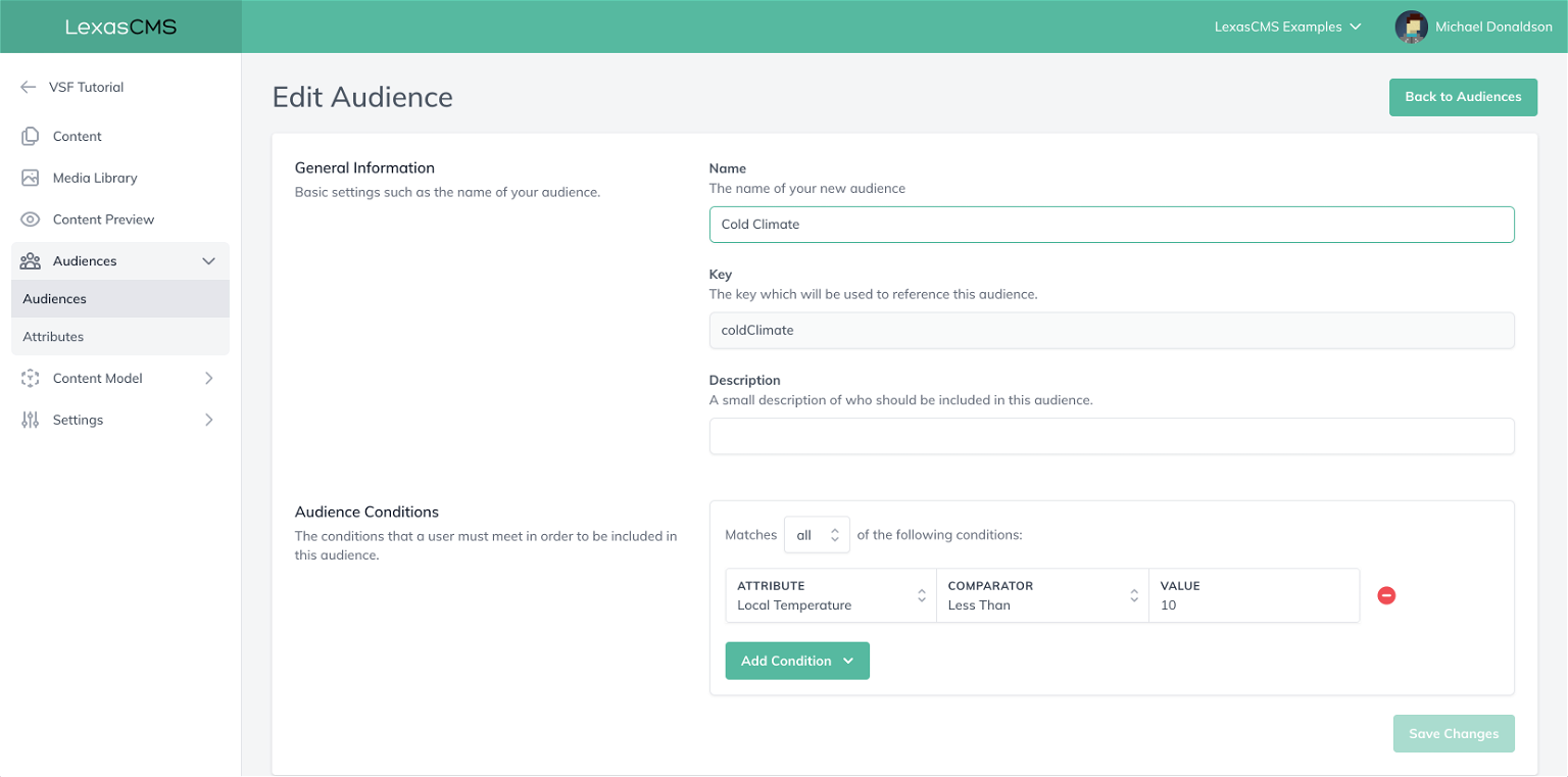 Configure audience conditions screenshot