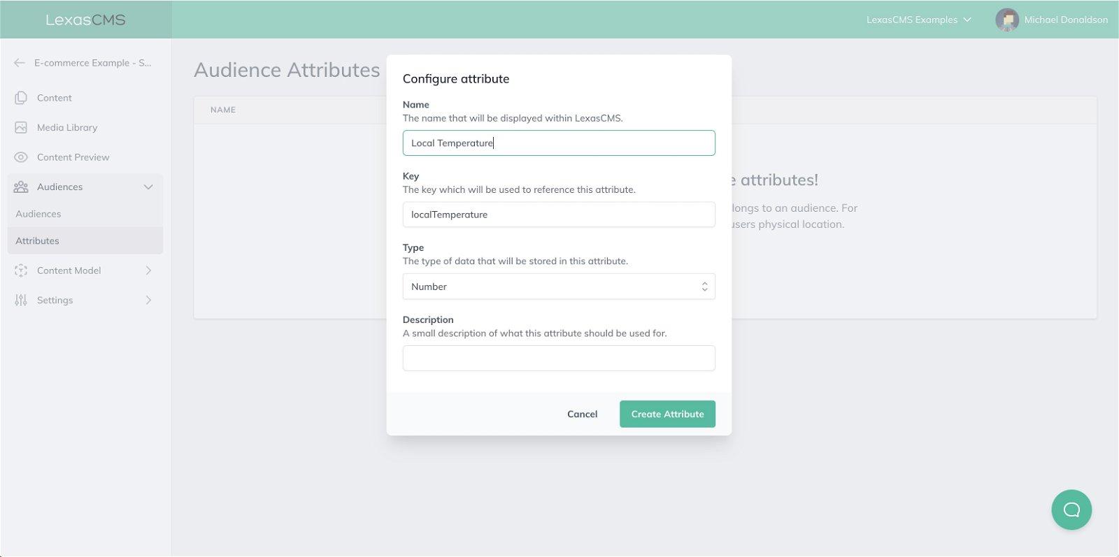 Create Audience Attribute